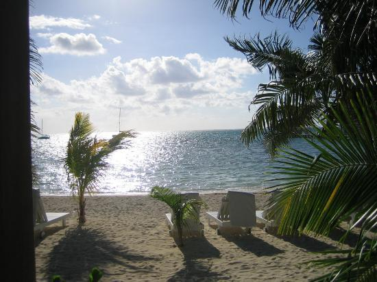 Ramon's Village Resort: View from the Cabana