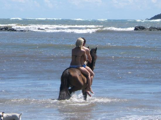 Windjammer Landing Villa Beach Resort: Horseback riding in the ocean!