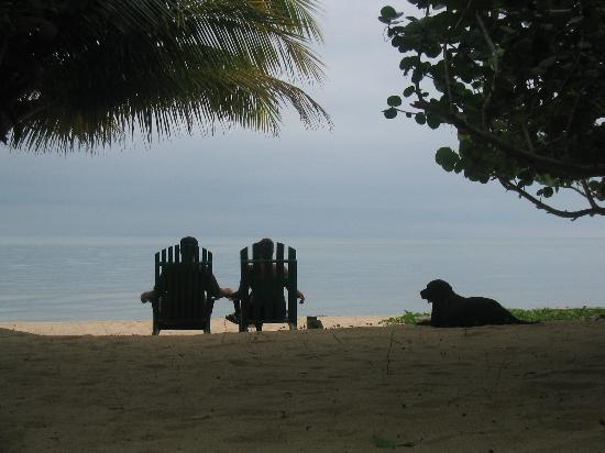 Hamanasi Adventure and Dive Resort: Our Favorite pic