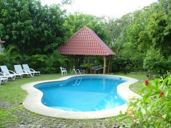 Blue Jay Lodge: The pool at Blue Jay
