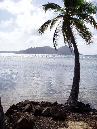 Photo taken from Truk Blue Lagoon Resort, Chuuk - Courtesy of media-cdn.tripadvisor.com