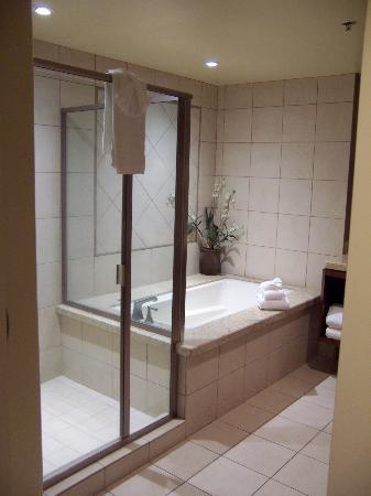 Cache Creek Casino Resort: Shower / bathtub