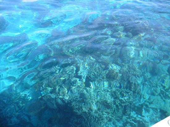 Hamanasi Adventure and Dive Resort-billede