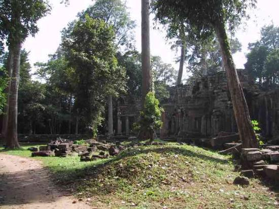Princess Angkor Hotel: Another temple