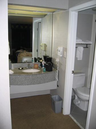 Quality Inn: Bathroom 1
