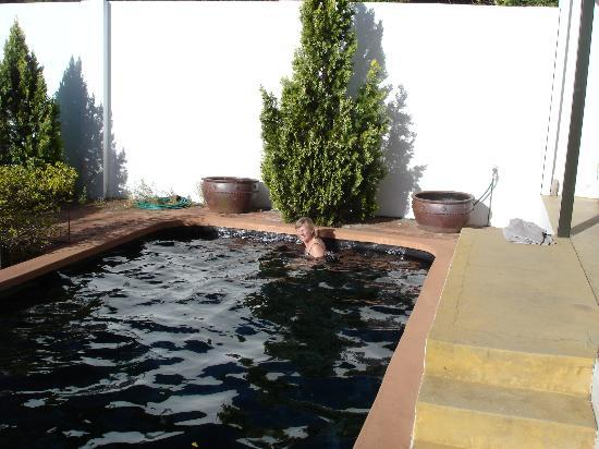 Akademie Street Boutique Hotel and Guest House: Swimming Pool