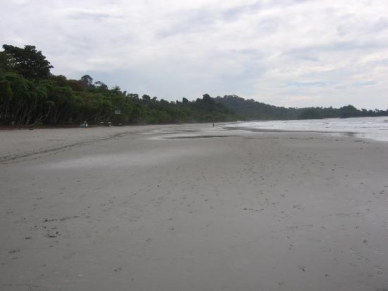 Si Como No Resort & Wildlife Refuge: public beach