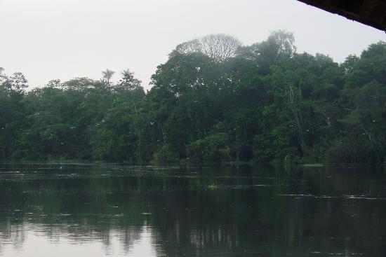 Foto de Estado de Amazonas