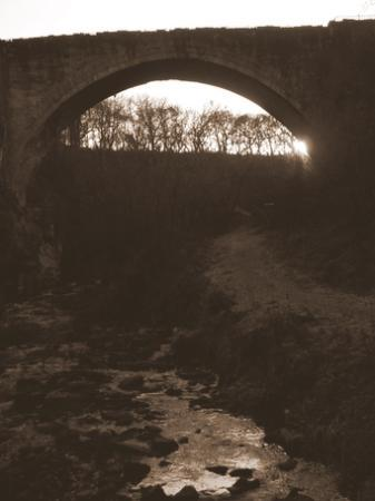 Beamish Park Hotel: Causey Arch, built in 1725-6 is the oldest surviving single arch railway bridge in the world...