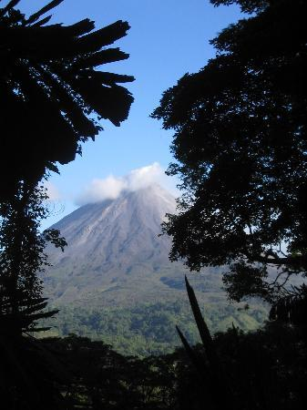 Lost Iguana Resort & Spa : arenal volcano