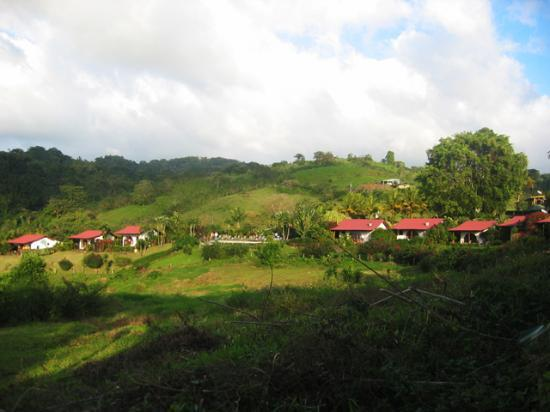 La Mansion Inn Arenal Hotel: The property from afar.