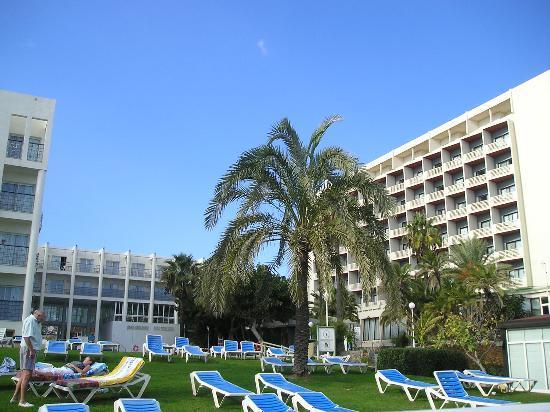 MedPlaya Hotel Pez Espada : Back of the hotel