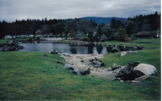 SameSun Backpacker Lodge: stanley park
