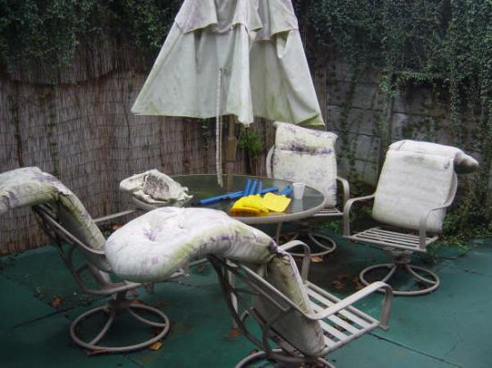 Garden Furniture New Orleans garden furniture - picture of india house hostel, new orleans