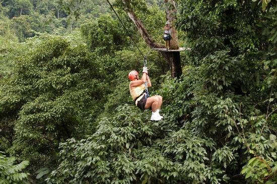 Arenal Canopy Tour: Gail in the distance