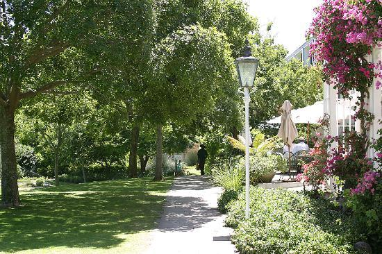 Vineyard Hotel: The botanical garden