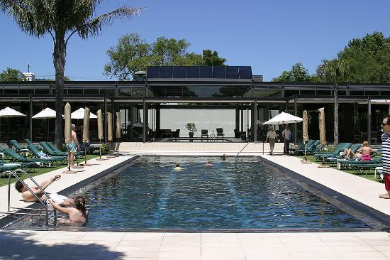 Vineyard Hotel: The outside pool.