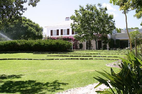 Vineyard Hotel: Another view of the garden