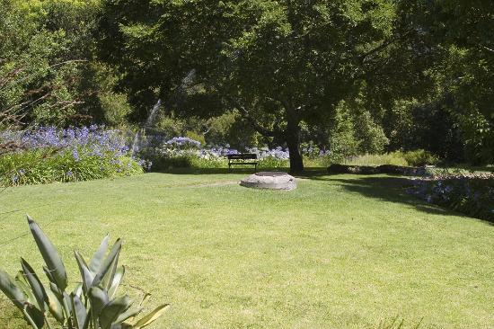 Vineyard Hotel: The garden once again