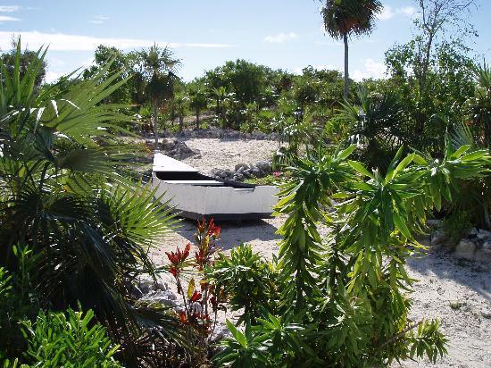Sammy T's Beach Resort: View on path to Beach