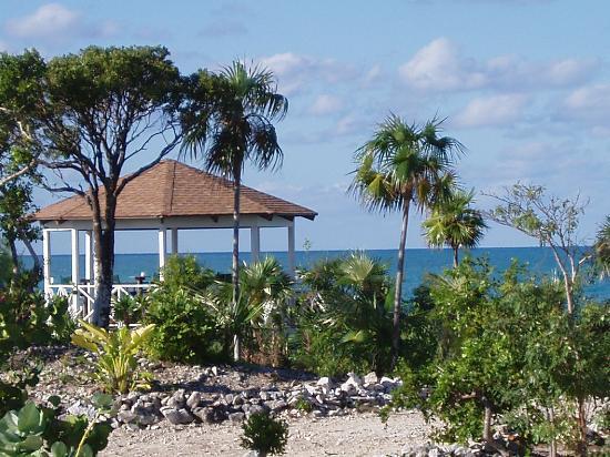 Sammy T's Beach Resort: Beach Gazebo