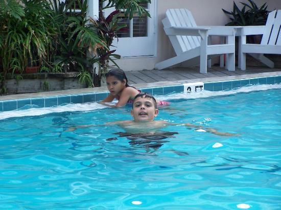 The Palms Hotel- Key West: Christmas Dip
