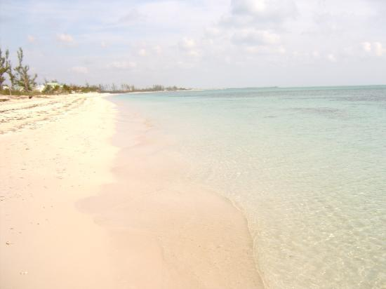 Viva Wyndham Fortuna Beach An All Inclusive Resort The White Pink Sand