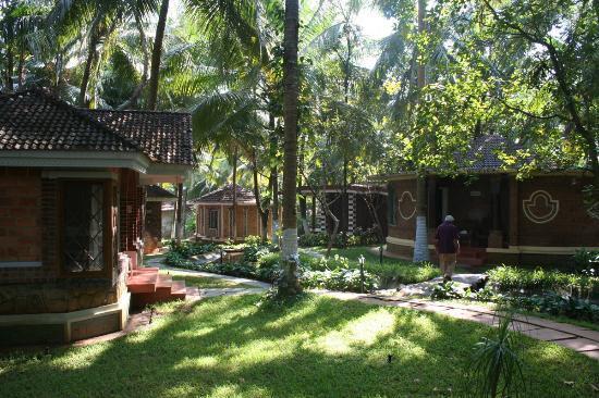 Kairali Ayurvedic Health Resort : Kairali garden