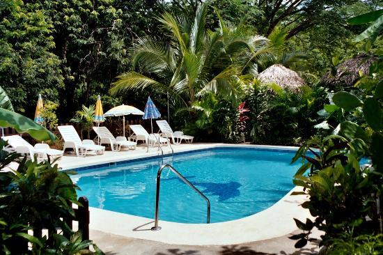 Hotel Belvedere - Playa Samara : pool Belvedere
