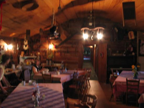 Smokey Shadows Lodge: Dining Room (sorry about the blur)