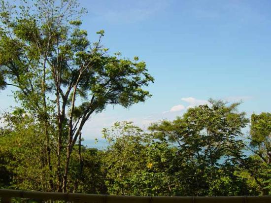 Si Como No Resort & Wildlife Refuge: Balcony View