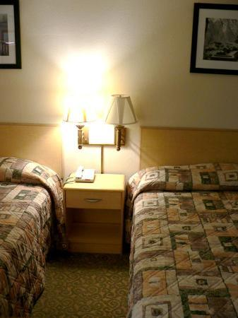 Quality Inn Gloucester City: Clash of the colors and patterns. Not exactly the best colors to sleep on.