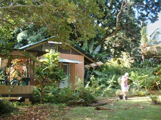 Akiko's Buddhist Bed and Breakfast: Mango Tree Cottage