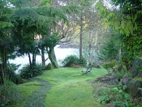 Clayoqout Retreat B&B: The garden
