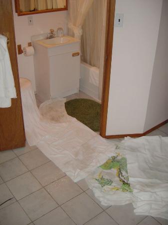 Clayoqout Retreat B&B: The flooded bathroom