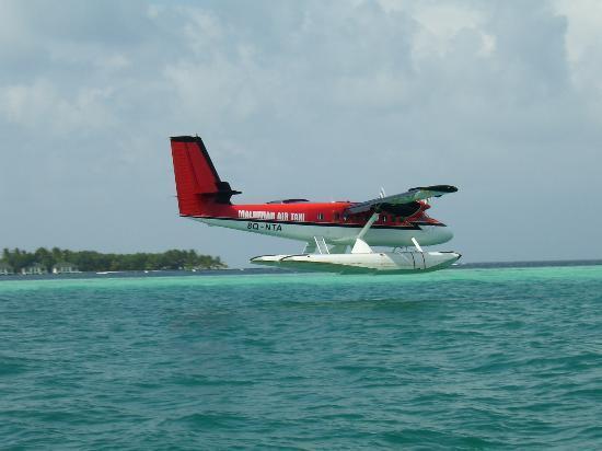 Lily Beach Resort & Spa: Seaplane landing to take us home