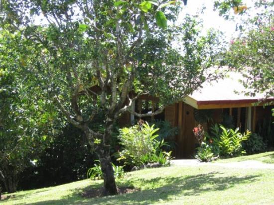 Arco Iris Lodge: arco iris cabin