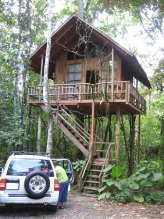 Tree Houses Hotel Costa Rica ภาพถ่าย