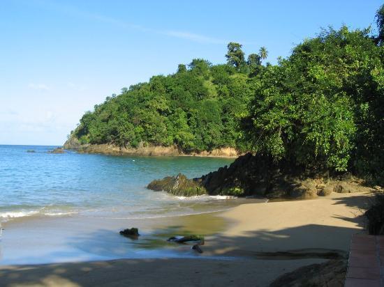 Naturalist Beach Resort: Beach