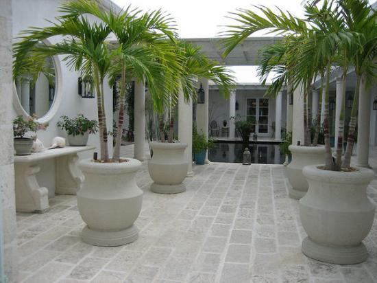 Grace Bay Club: The Palms Spa
