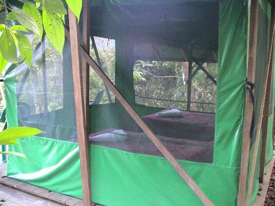 Luna Lodge: A tent from the inside