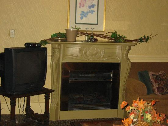 The Irish Harp Pub Inn: fireplace