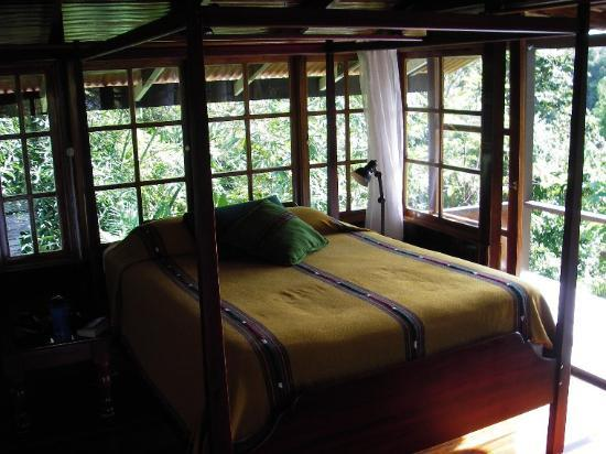 La Paloma Lodge: Room with view on three sides