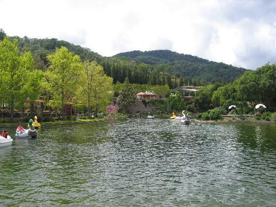 Gilroy Gardens Family Theme Park: Nice little park in Gilroy