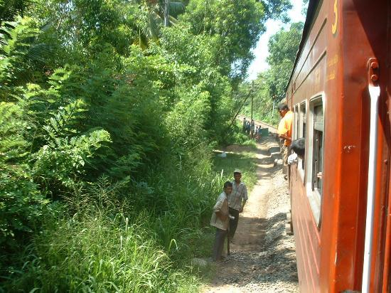 Beruwala, Sri Lanka: Hang On Tight!!