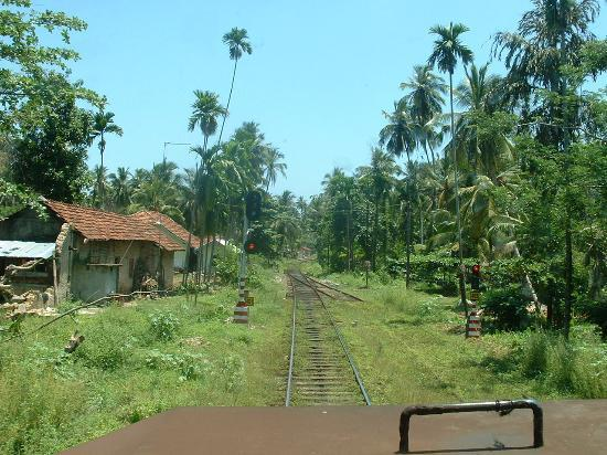 Beruwala, Sri Lanka: View from the engine cab on the way back to Alutgama