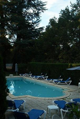 L'Orangerie du Chateau des Reynats: The swimming pool off the terrace