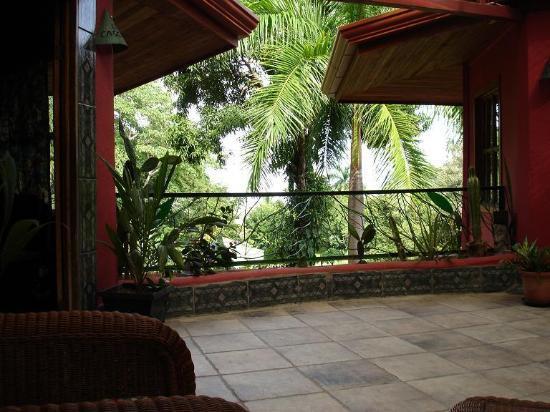 Condotel Las Cascadas: View from patio.