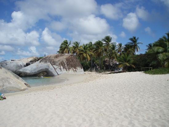 The Crawl Picture Of British Virgin Islands Caribbean