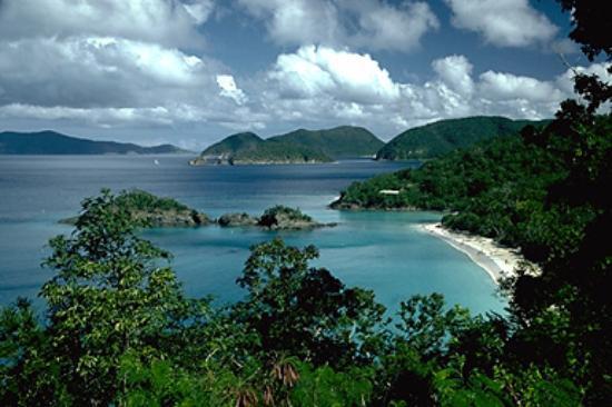 Virgin Islands National Park, St. John: Winter10